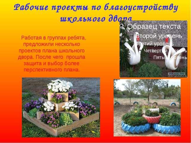 Рабочие проекты по благоустройству школьного двора Работая в группах ребята,...