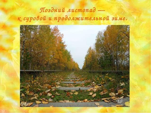 Поздний листопад — к суровой и продолжительной зиме.