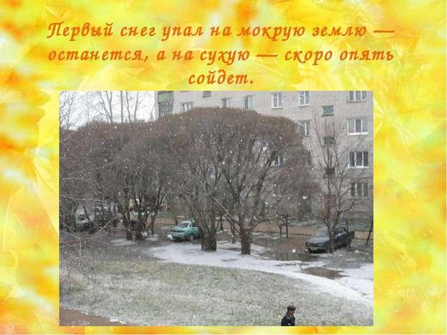 Первый снег упал на мокрую землю — останется, а на сухую — скоро опять сойдет.