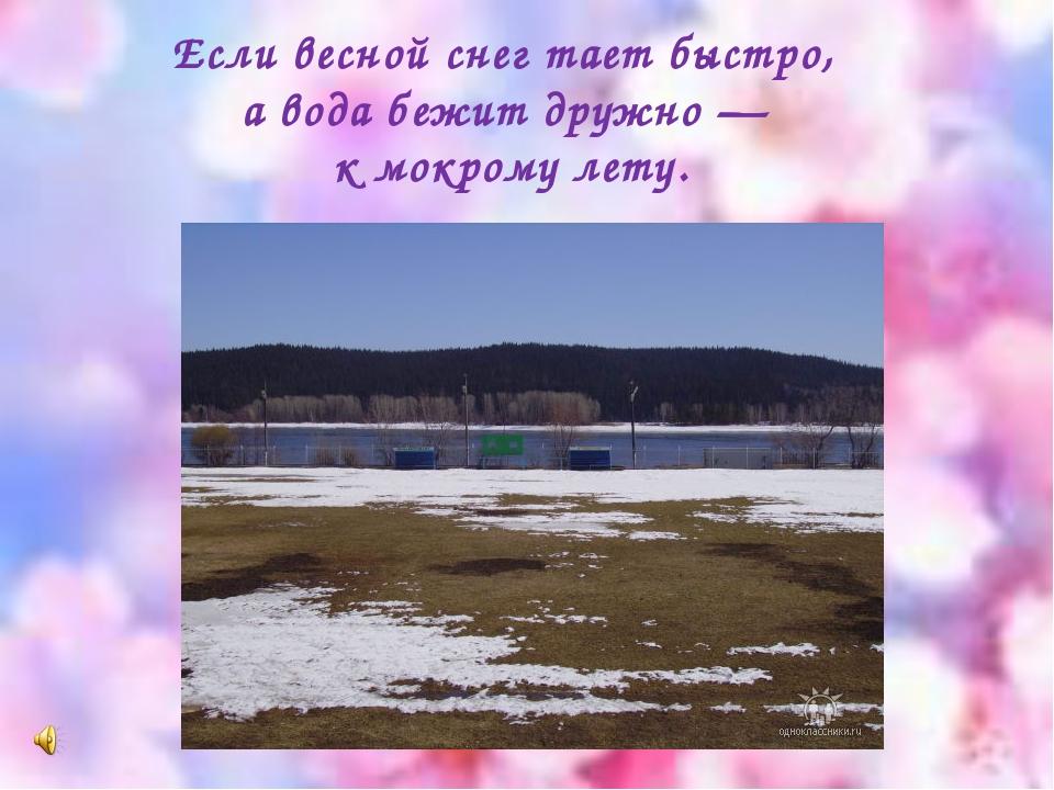 Если весной снег тает быстро, а вода бежит дружно — к мокрому лету.