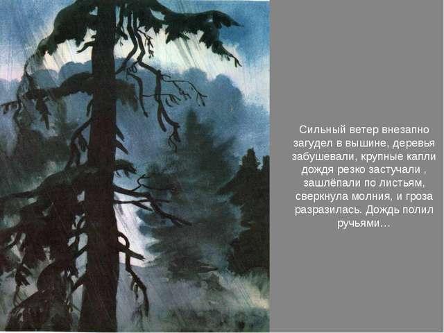 Сильный ветер внезапно загудел в вышине, деревья забушевали, крупные капли д...