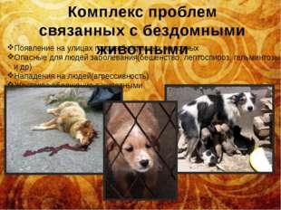 Комплекс проблем связанных с бездомными животными Появление на улицах города