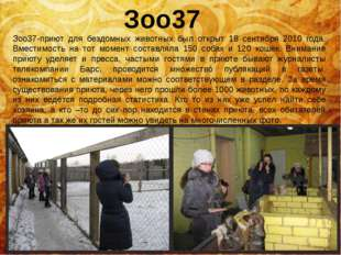 Зоо37 Зоо37-приют для бездомных животных был открыт 18 сентября 2010 года. Вм