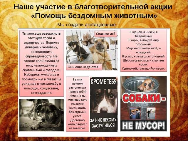 Наше участие в благотворительной акции «Помощь бездомным животным» Мы создали...