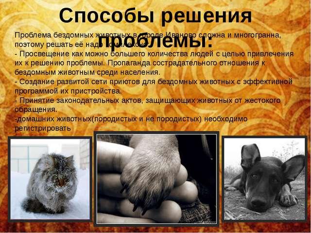 Способы решения проблемы: Проблема бездомных животных в городе Иваново сложна...