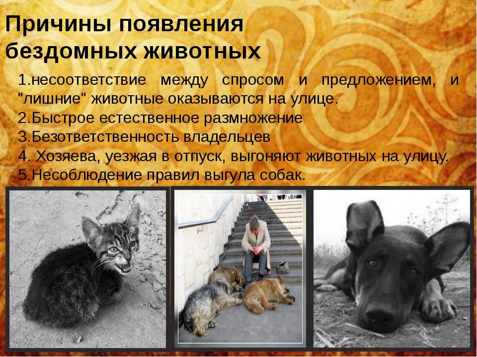 Причины появления бездомных животных 1.несоответствие между спросом и предлож...
