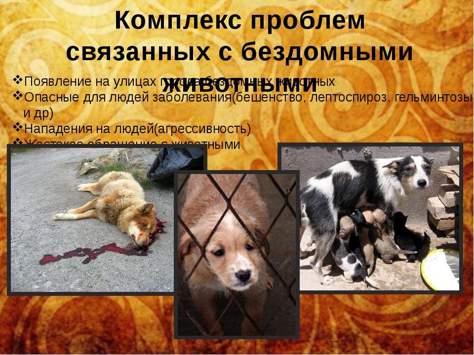 Комплекс проблем связанных с бездомными животными Появление на улицах города...