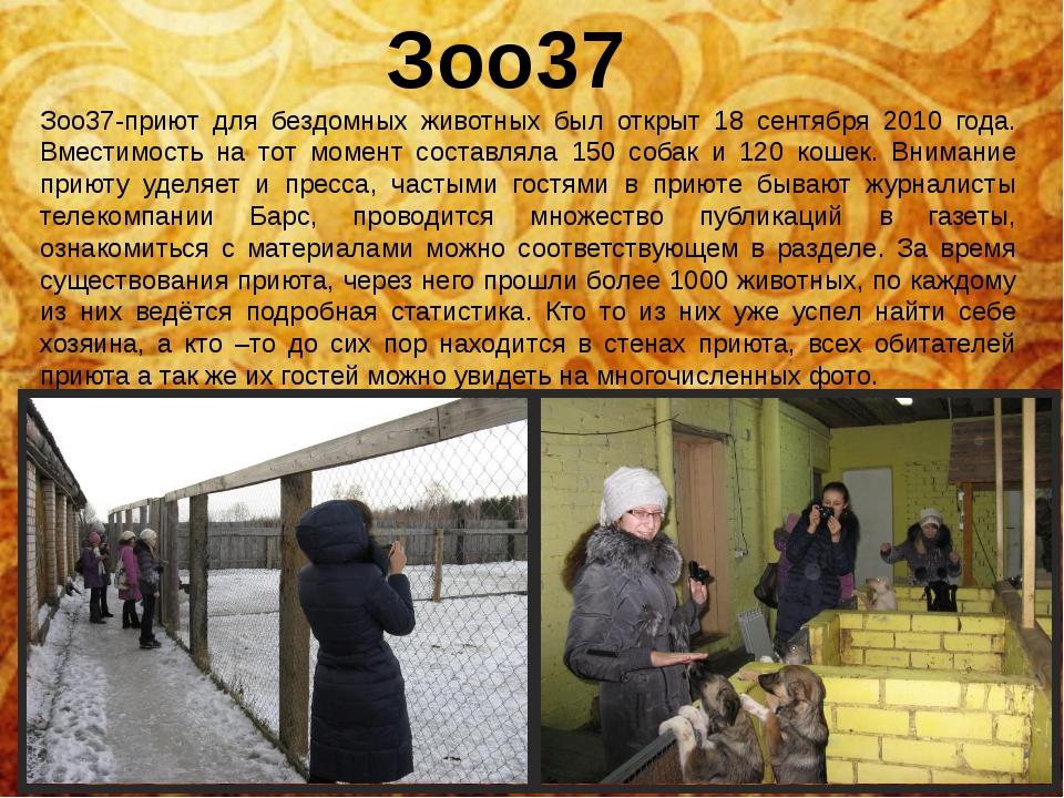 Зоо37 Зоо37-приют для бездомных животных был открыт 18 сентября 2010 года. Вм...