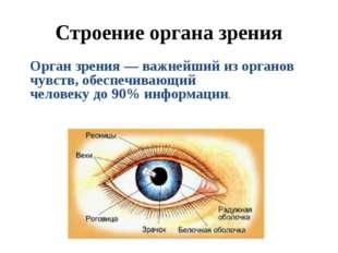 Строение органа зрения Орган зрения — важнейший из органов чувств, обеспечива