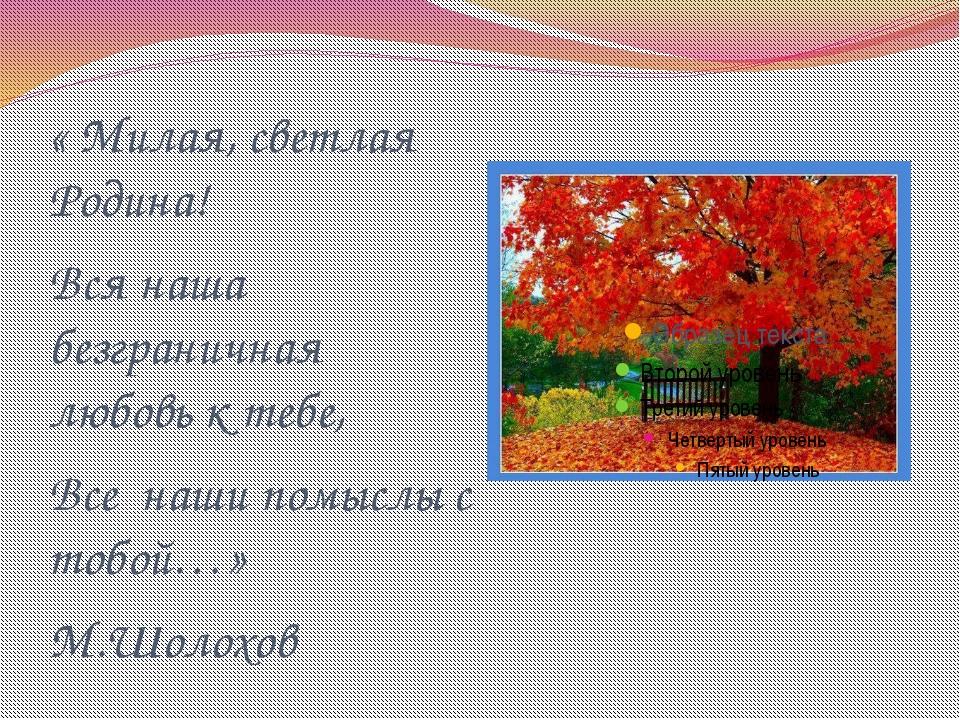 « Милая, светлая Родина! Вся наша безграничная любовь к тебе, Все наши помысл...