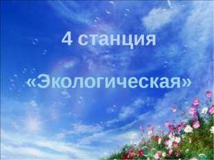 4 станция «Экологическая»