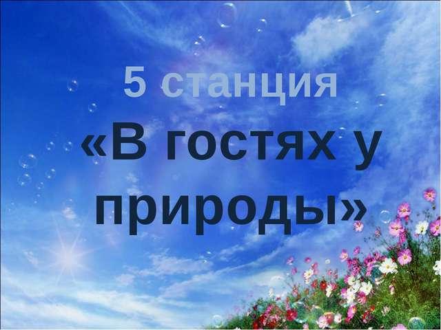 5 станция «В гостях у природы»