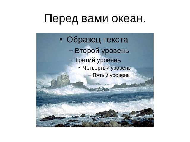 Перед вами океан.
