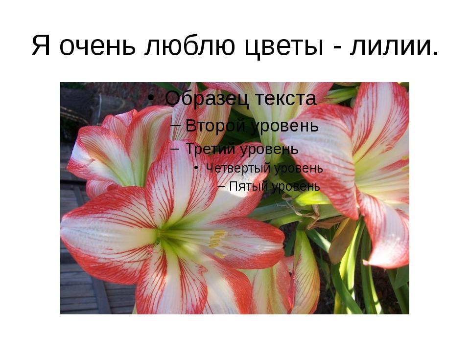 Я очень люблю цветы - лилии.