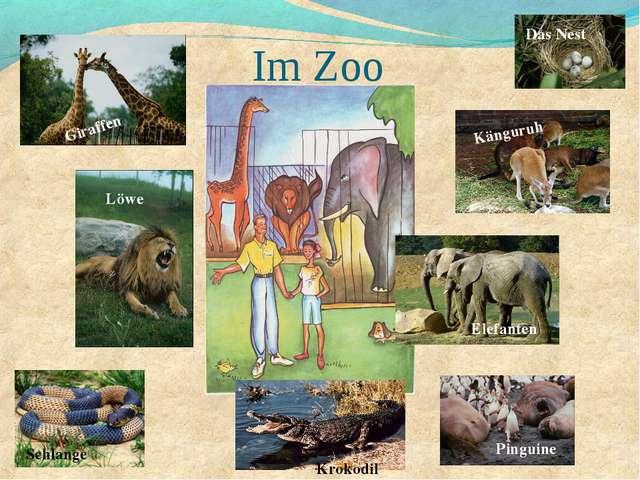 Im Zoo Giraffen Löwe Schlange Krokodil Pinguine Elefanten Känguruh Das Nest