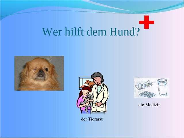 Wer hilft dem Hund? der Tierarzt die Medizin