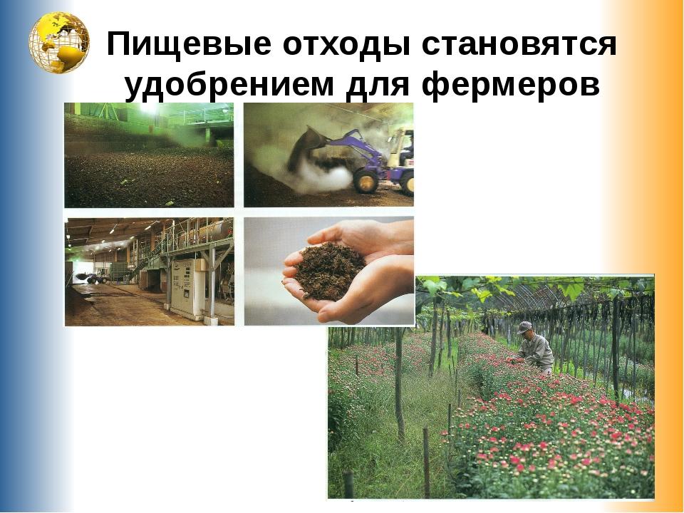 Пищевые отходы становятся удобрением для фермеров
