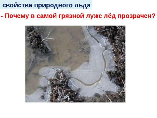 свойства природного льда - Почему в самой грязной луже лёд прозрачен?