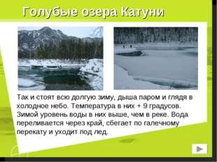 Голубые озера Катуни Так и стоят всю долгую зиму, дыша паром и глядя в холодн