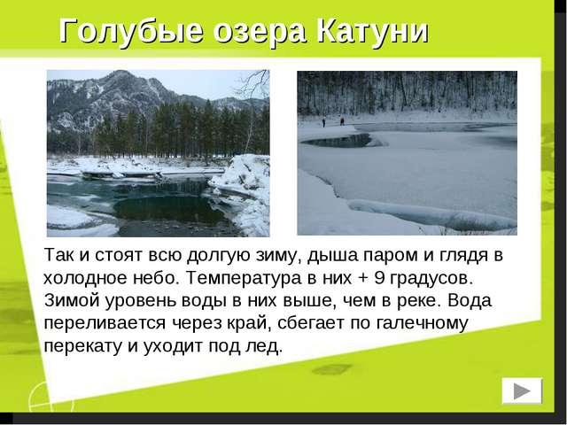 Голубые озера Катуни Так и стоят всю долгую зиму, дыша паром и глядя в холодн...