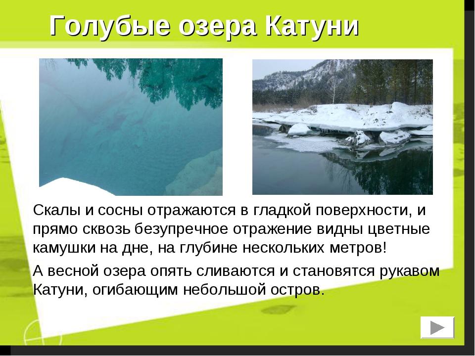 Голубые озера Катуни Скалы и сосны отражаются в гладкой поверхности, и прямо...