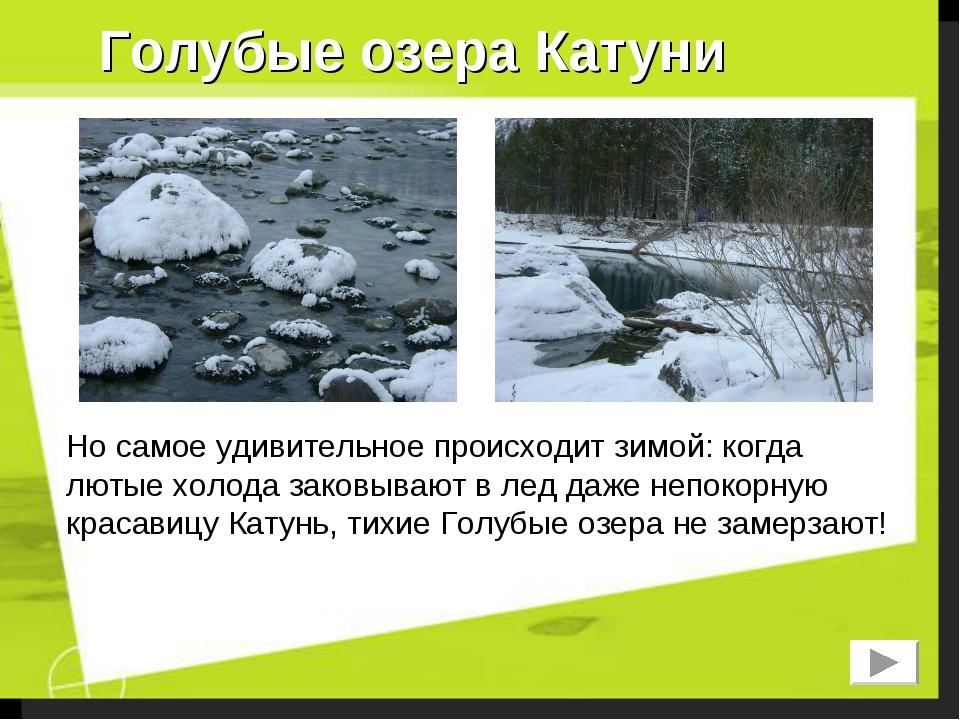 Голубые озера Катуни Но самое удивительное происходит зимой: когда лютые холо...