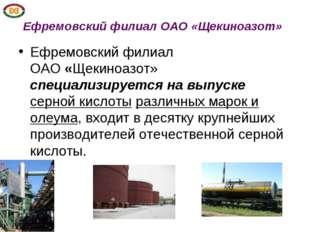 Ефремовский филиал ОАО«Щекиноазот» Ефремовский филиал ОАО«Щекиноазот» спец