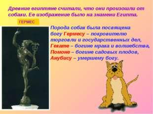 Древние египтяне считали, что они произошли от собаки. Ее изображение было на