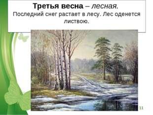 Третья весна – лесная. Последний снег растает в лесу. Лес оденется листвою. F