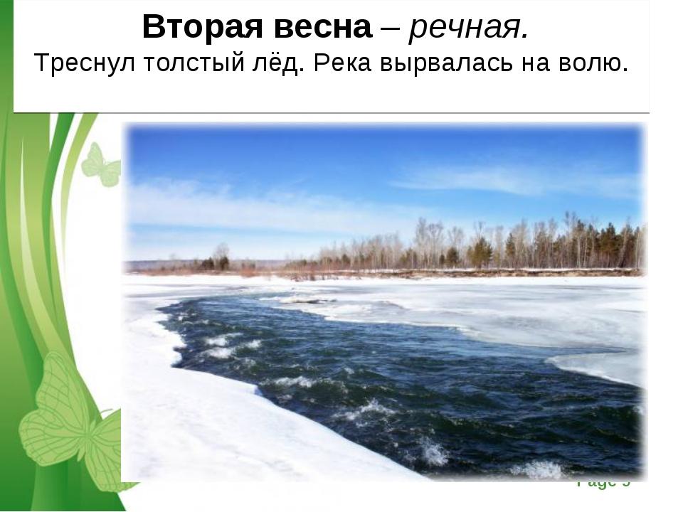 Вторая весна – речная. Треснул толстый лёд. Река вырвалась на волю. Free Pow...