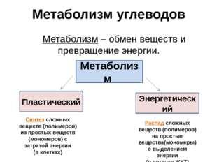 Метаболизм углеводов Метаболизм – обмен веществ и превращение энергии. Метаб