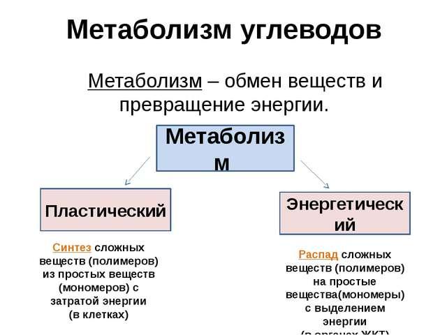 Метаболизм углеводов Метаболизм – обмен веществ и превращение энергии. Метаб...