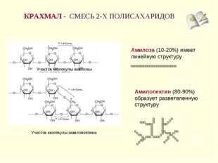 КРАХМАЛ - СМЕСЬ 2-Х ПОЛИСАХАРИДОВ * Амилоза (10-20%) имеет линейную структуру