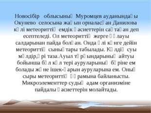 Новосібір облысының Муромцев ауданындағы Окунево селосына жақын орналасқан Д