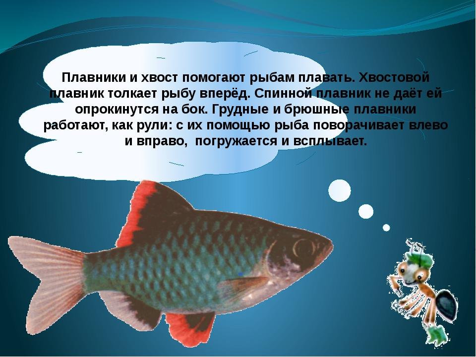 Рыбы не могут жить без кислорода. Вода содержит кислород, и большинство рыб...