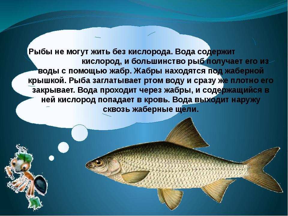 Тело почти всех рыб покрыто чешуёй. Она растёт всё жизнь, нарастая колечками...