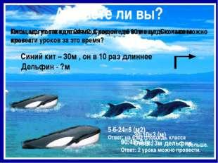 Площадь пасти кита 24 м2. Сравните её с площадью нашего класса. Киты могут на