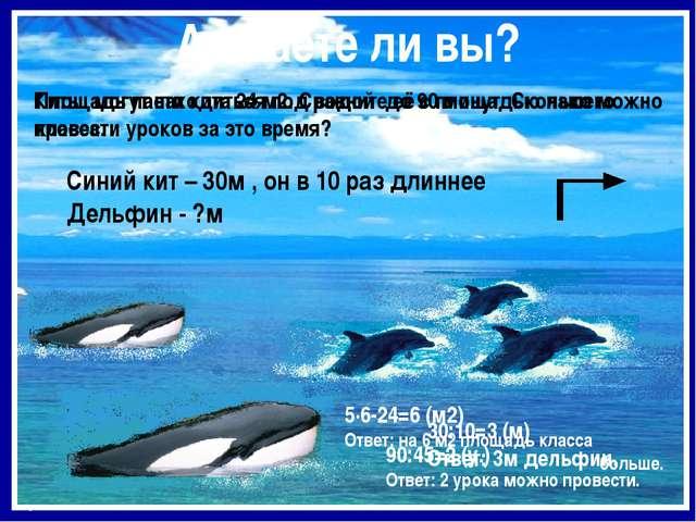Площадь пасти кита 24 м2. Сравните её с площадью нашего класса. Киты могут на...