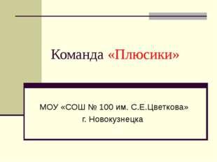 Команда «Плюсики» МОУ «СОШ № 100 им. С.Е.Цветкова» г. Новокузнецка