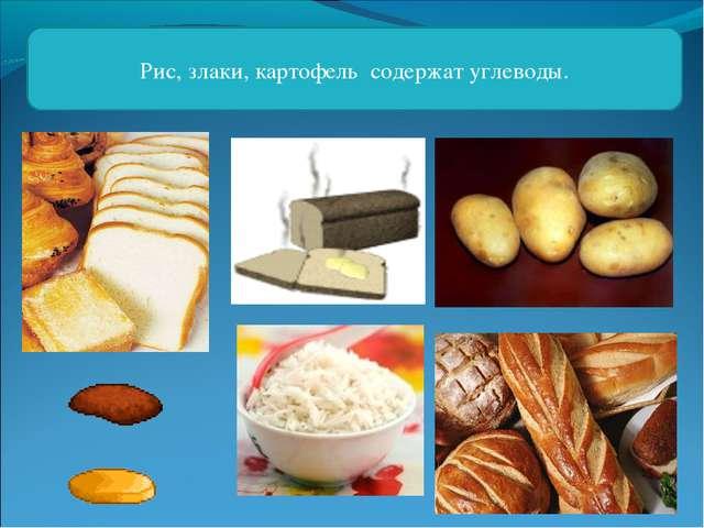 Рис, злаки, картофель содержат углеводы.