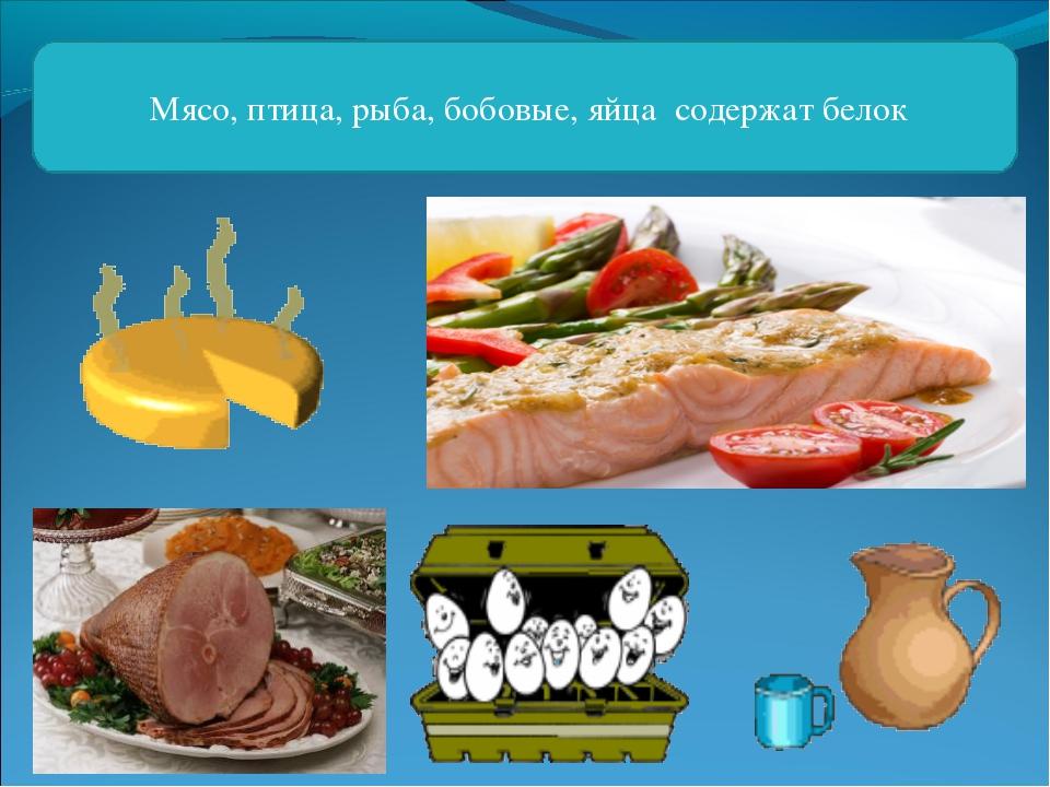 Мясо, птица, рыба, бобовые, яйца содержат белок