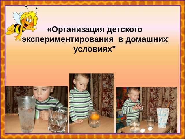 """«Организация детского экспериментирования в домашних условиях"""""""