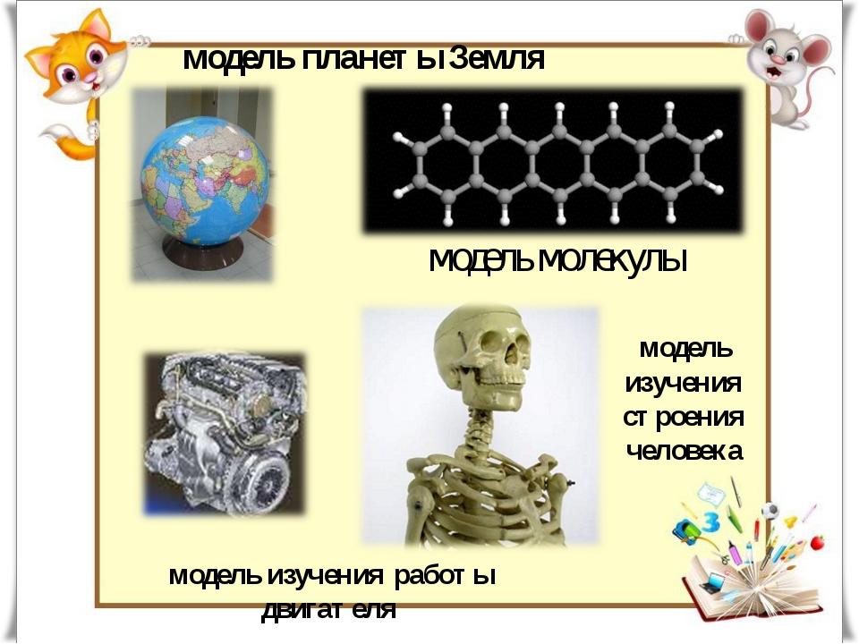 модель планеты Земля модель изучения работы двигателя модель молекулы модель...