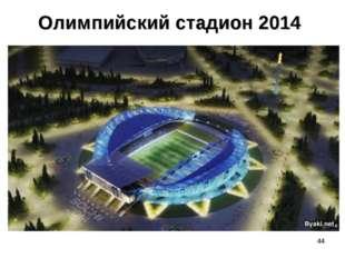 Олимпийский стадион 2014 *