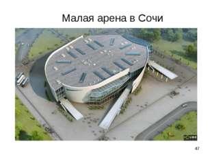 * Малая арена в Сочи