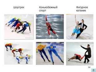 Шортрек Конькобежный спорт Фигурное катание *