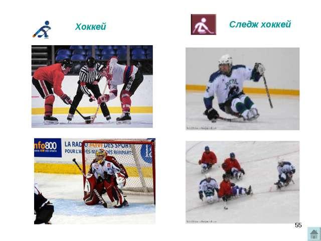 Следж хоккей Хоккей *