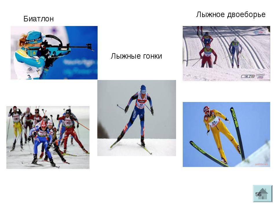 Биатлон Лыжные гонки Лыжное двоеборье *