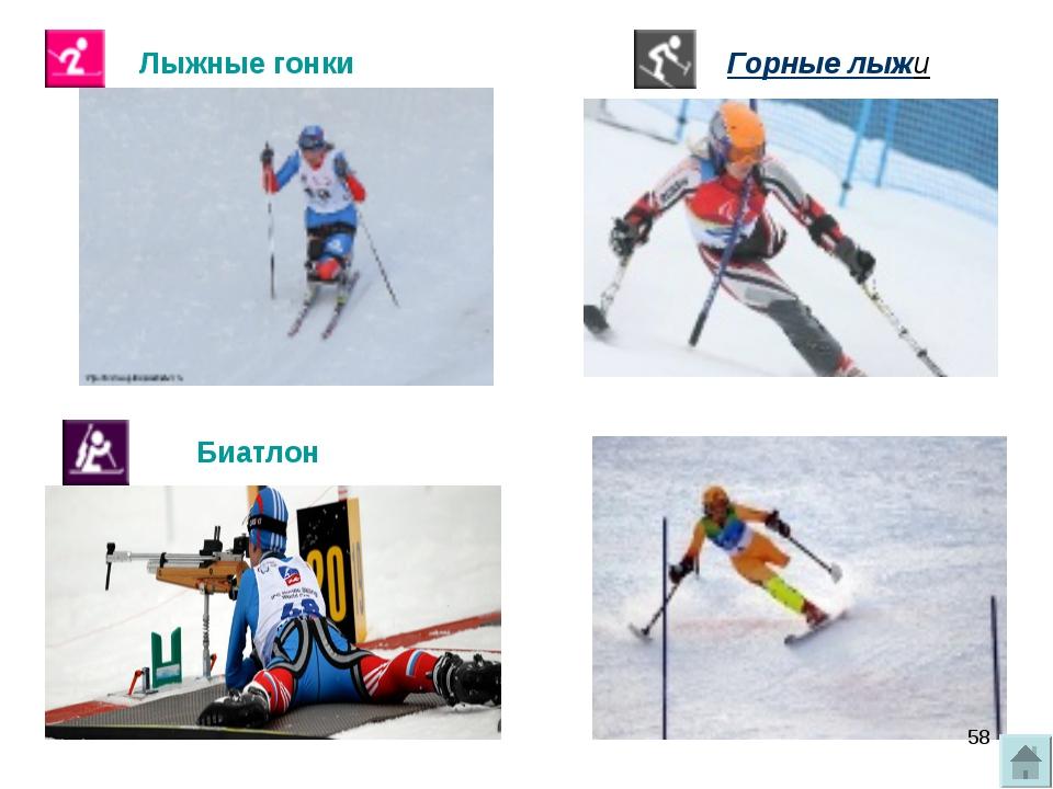 Лыжные гонки Биатлон Горные лыжи *