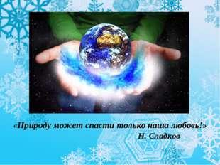 «Природу может спасти только наша любовь!» Н. Сладков